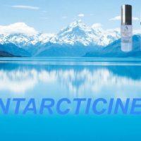 Antarcticine 2