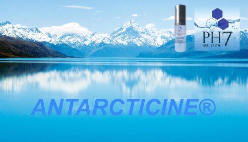 Antarcticine 3