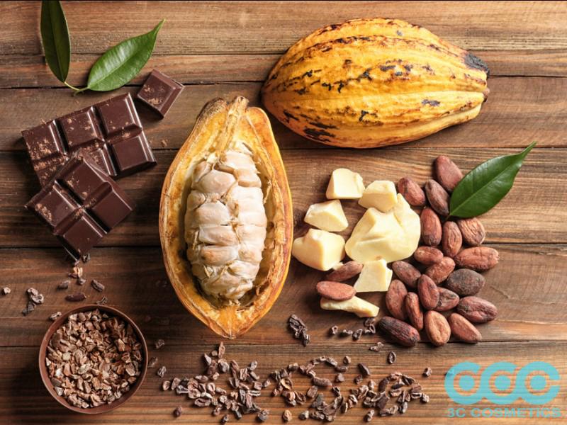 Thành phần dinh dưỡng trong bơ cacao