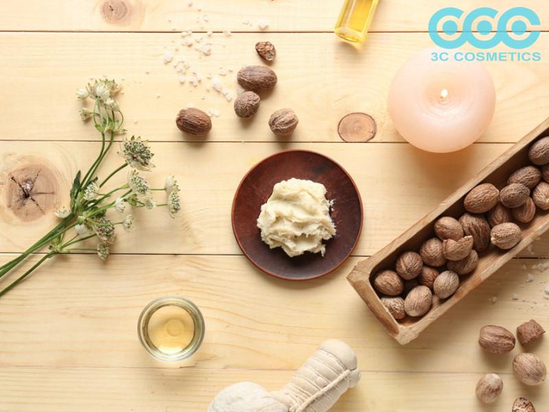Công dụng dưỡng ẩm cho da của bơ shea