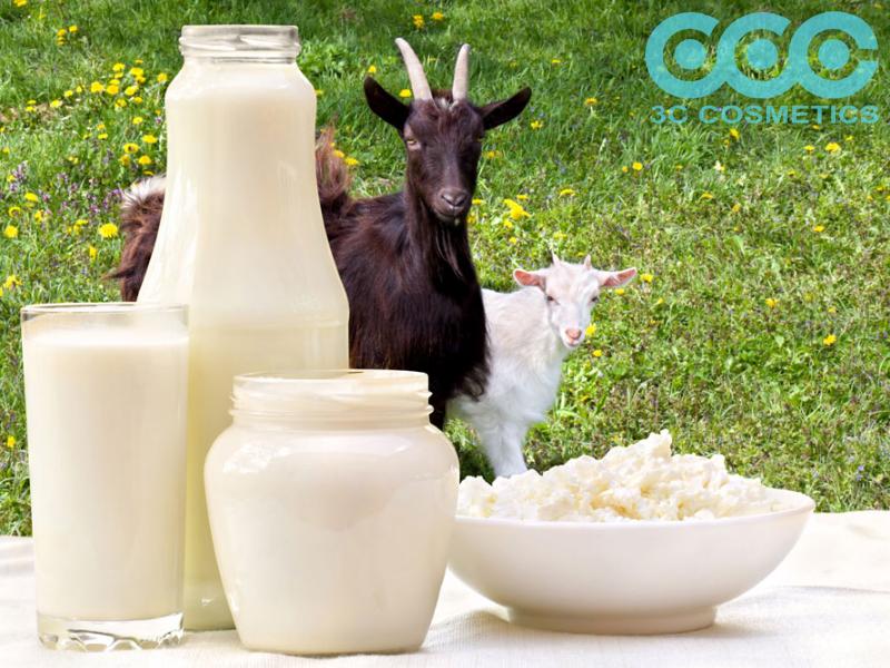 Bột sữa dê - Nguyên liệu của ngành mỹ phẩm thế hệ mới.