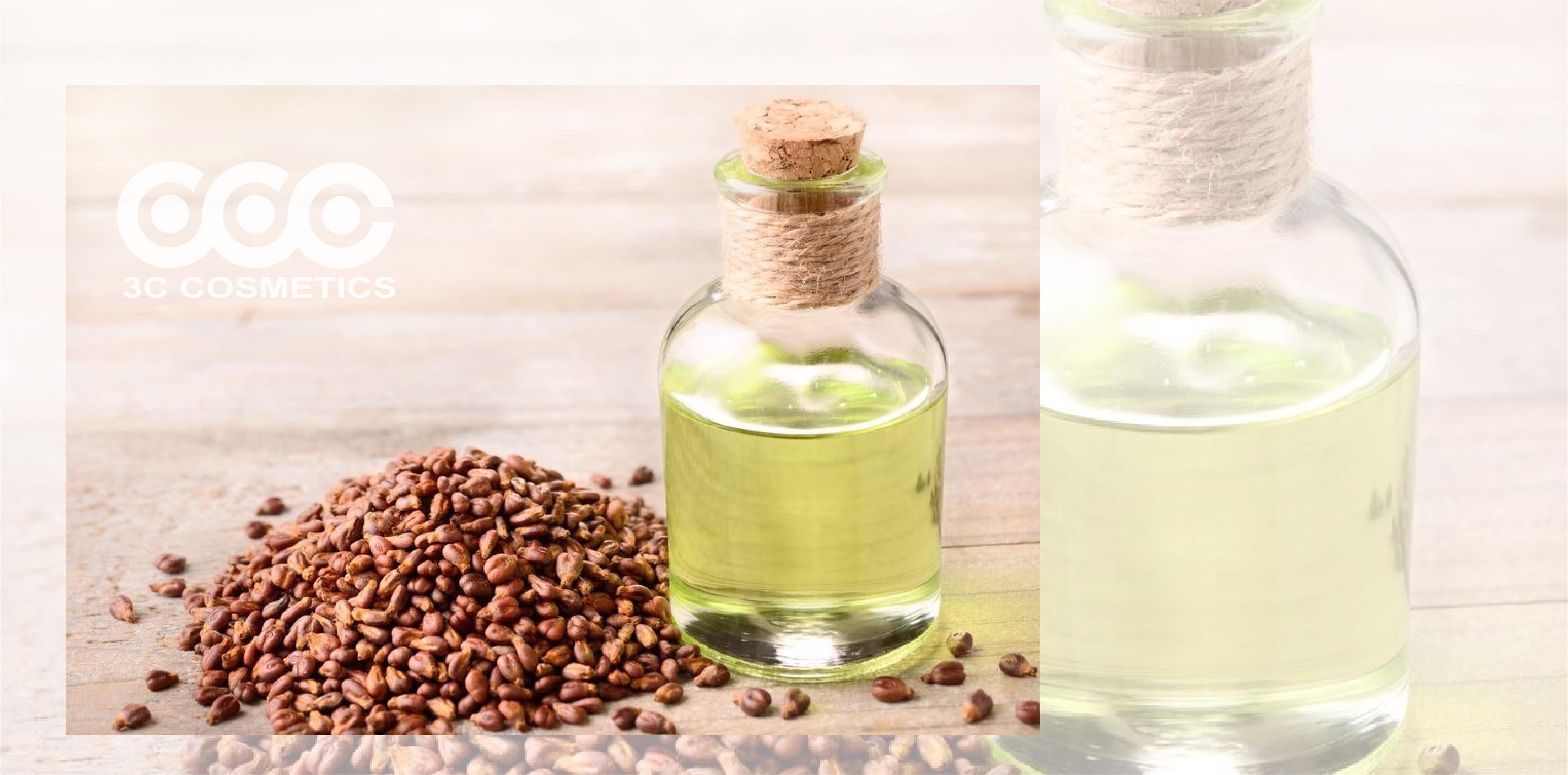Tinh dầu hạt nho cho da dầu