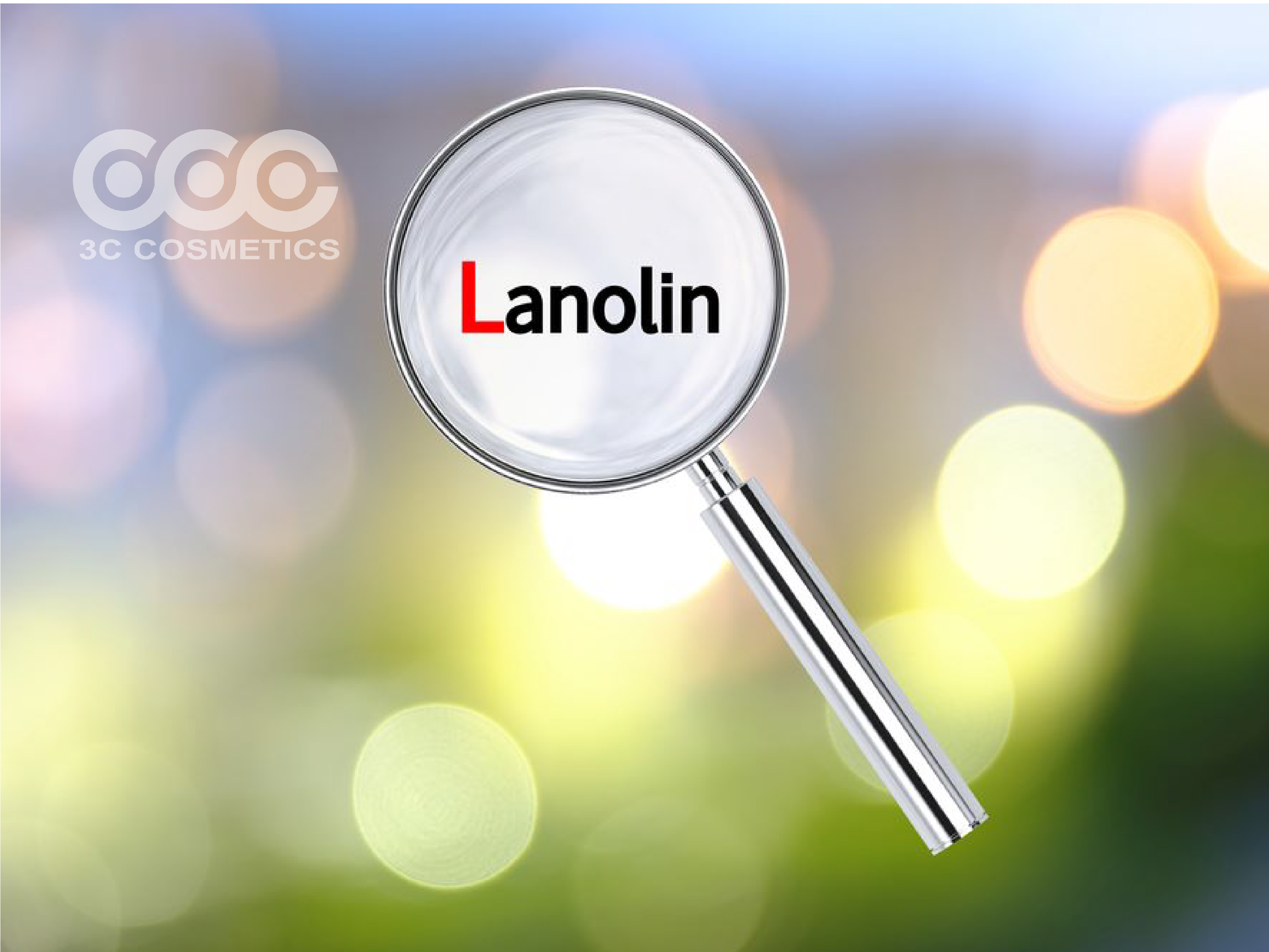 Lanolin còn gọi là mỡ cừu (mỡ lông cừu)