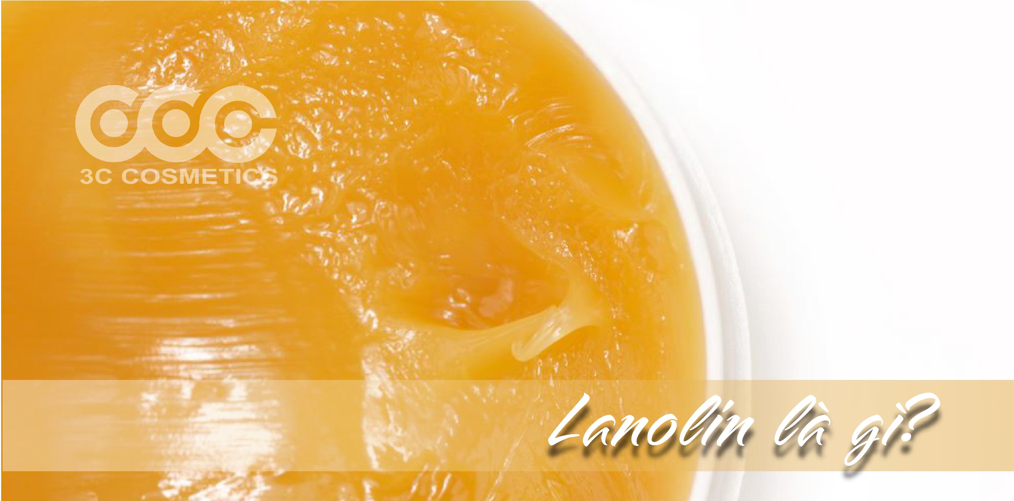 Lanolin là gì?
