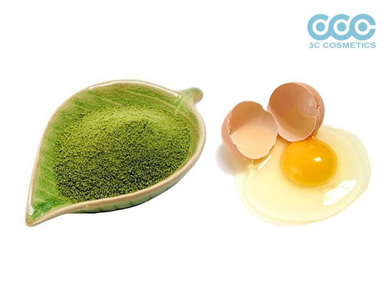 Mặt nạ trà xanh với lòng trắng trứng